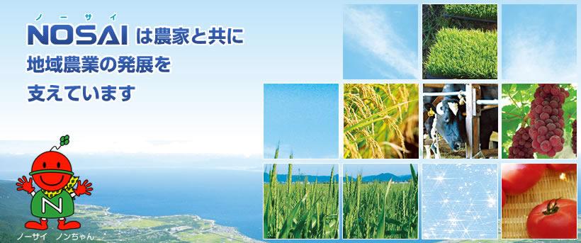 NOSAIは農家と共に地域農業の発展のために歩んでいきます